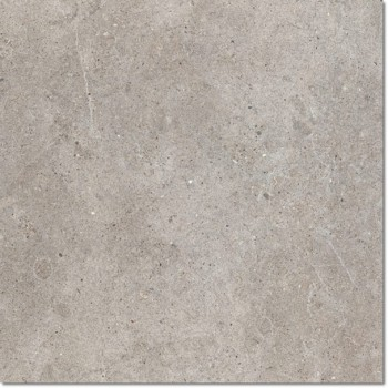 Back2Back grey minerale Nat. 60x60