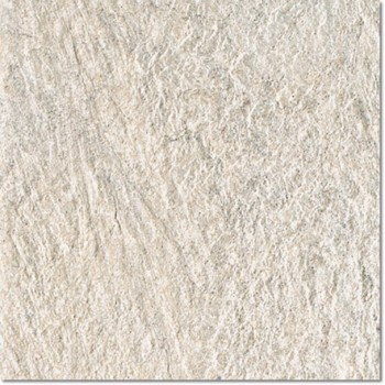 Ground_D White Bear 60x60