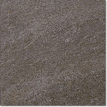 Ground_D Black Puma 60x60
