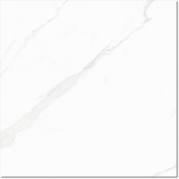 Statuary Blanco High Glass 60x60
