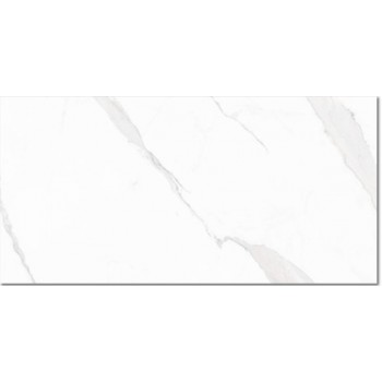 Statuary Blanco High Glass 30x60