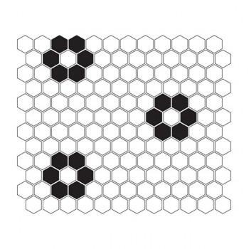 Mini HEXAGON B&W Flower 30x26 cm
