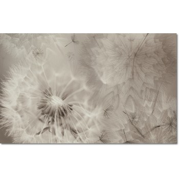 Decor Lidia Ii Snow 25x40