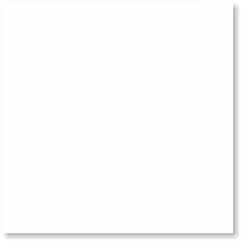 Blanco Brillo Rect. 60x60