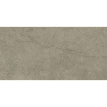 Plus Taupe Polished Rect 60x120